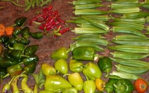 Cajun food basics
